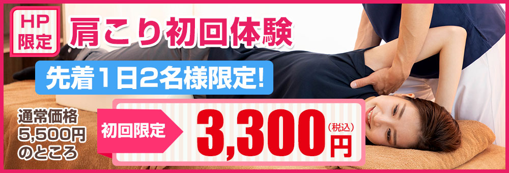 HP限定初回特別価格3300円
